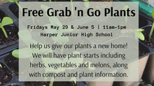 Free Grab 'n Go Plants on 05/29 and 06/05!