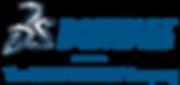 3DS_2014_Logo_Lockup_Vertical_BlueSteel_