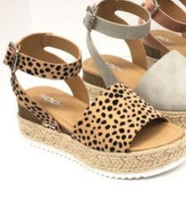 Topic Cheetah