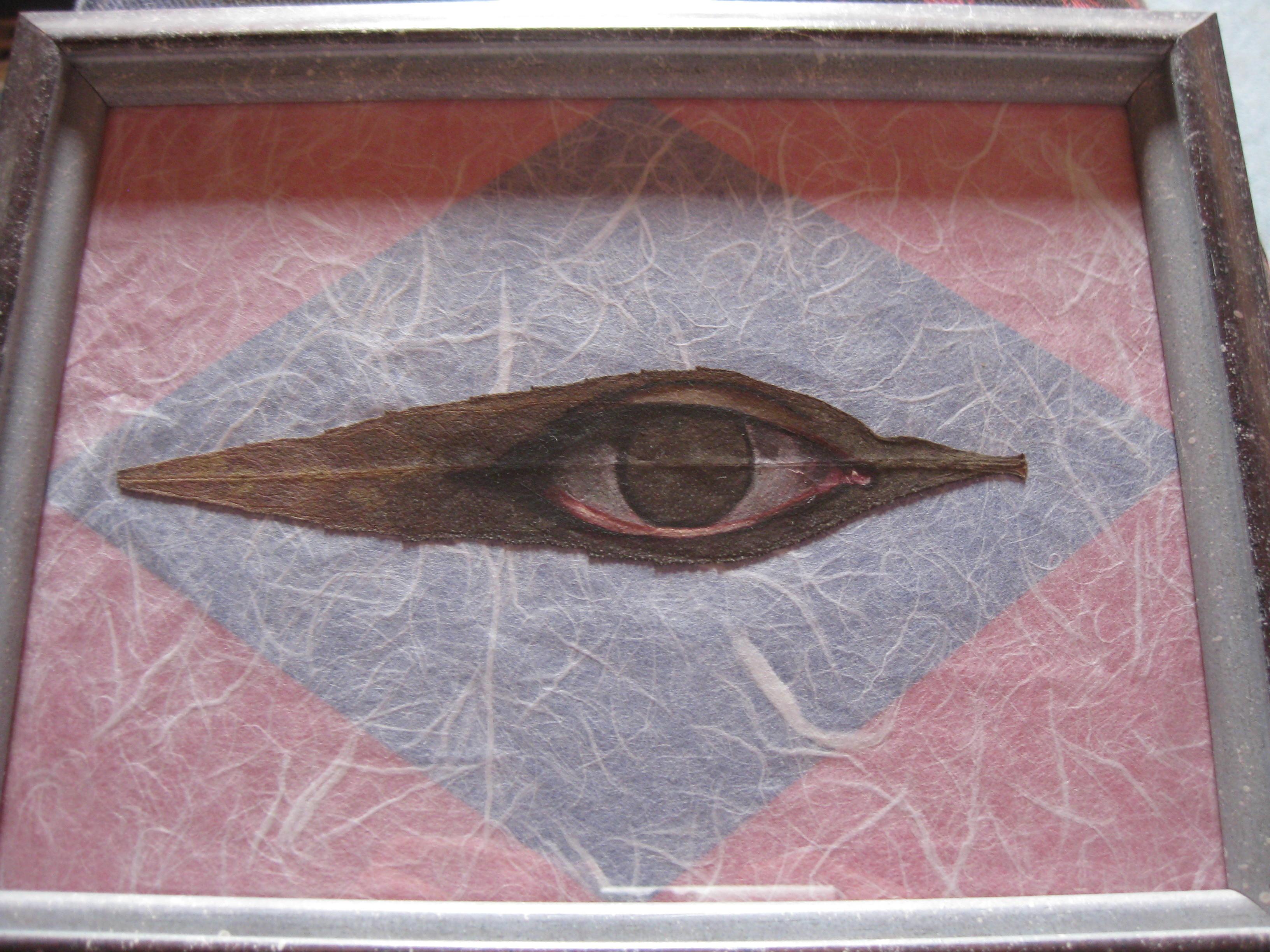 Auge mit Rahmen