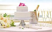 Celebrate Love-59c5719fbe807-480x300.jpg