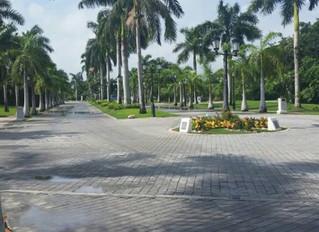 Iberostar Paraiso Maya Resort is for everyone!
