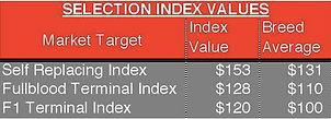 Lot 4-index.jpg