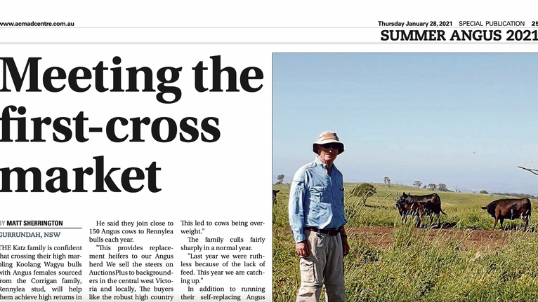 The Land - Summer Angus 2021 supplement