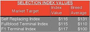 Lot 2-index.jpg