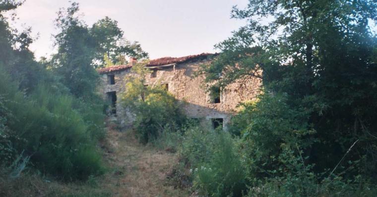 Moli Serrador