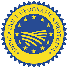 IGPvettoriale.png