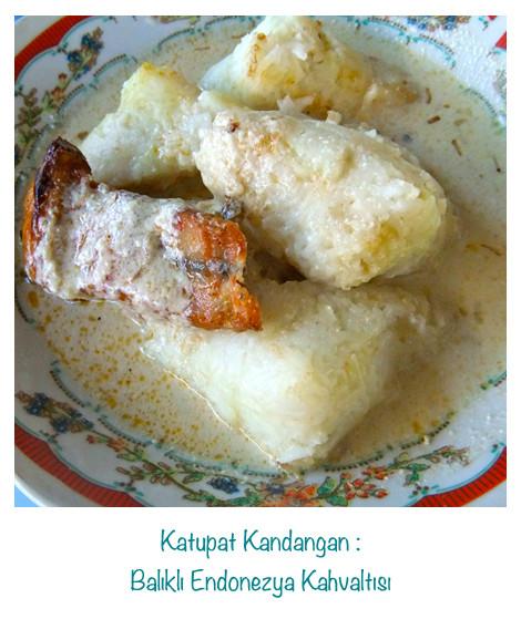 Endonezya usulü hindistan cevizi sütünde pişirilmiş beyaz balık