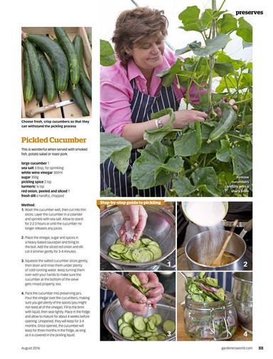 rachel green chef