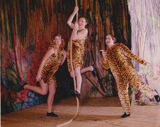 1995 Sinbad (14).jpg
