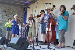 A forest of fiddles 2014MusterR