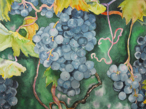 Fruit of the Vine 13 X 9.5