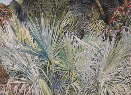 Palm Parade     20.5 X15.jpg