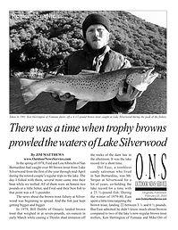 SilverwoodBrowns-Cover.jpg