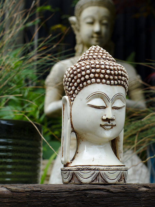 Large Buddha Head - Cream or Black