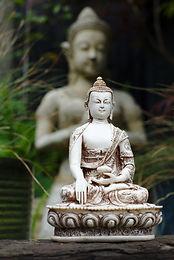 Buddhas & Homewares
