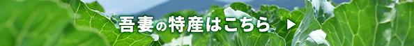 bnr_tokusan.png
