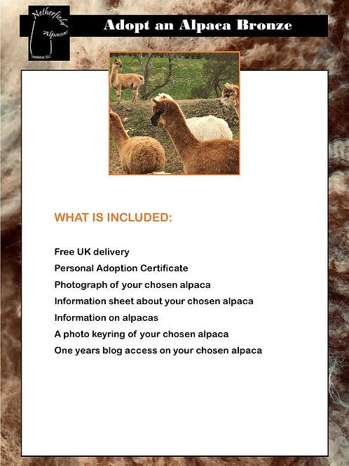 Adopt an alpaca Bronze
