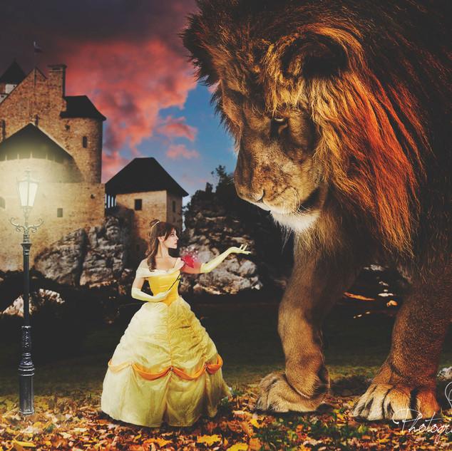 Beauty Meets Beast