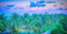 south-beach-891749_1920.jpg