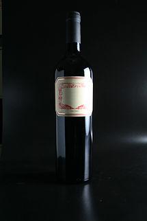Bottiglia del vino rosso