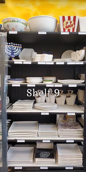 Shelf_9_5.png