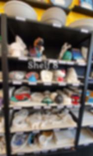 Shelf 8.png