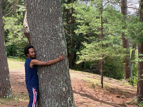 I told you trees are wise =)