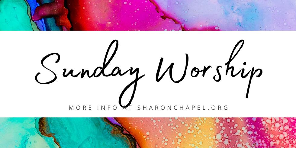 Sunday Worship + Coffee Hour