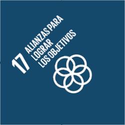 ODS 17: Alianzas Para Lograr los Objetivos