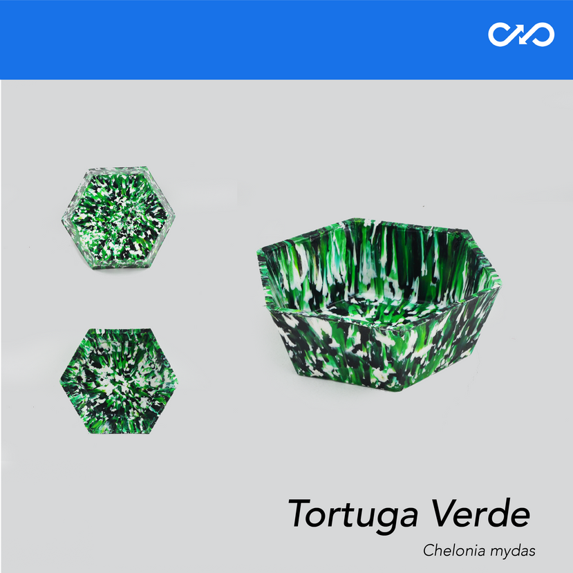 Bowl/Matera Fragata Portuguesa