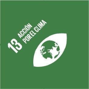 ODS 13: Acción por el Clima