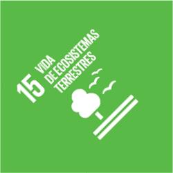 ODS 15: Vida de Ecosistemas Terrestres