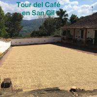 Tour del Café en San Gil - Hda El Calapo