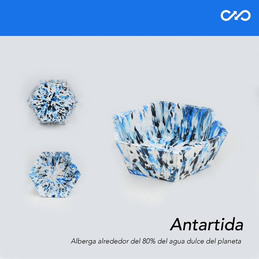 Bowl/Matera Antártida