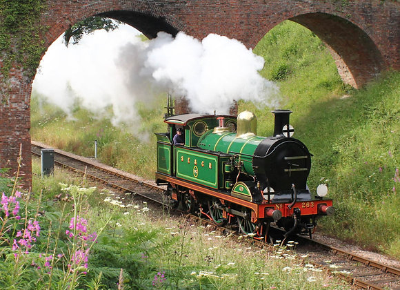 Bluebell Railway: May 2021