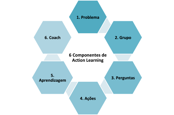 Figura 1 – Os 6 componentes de Action Learning