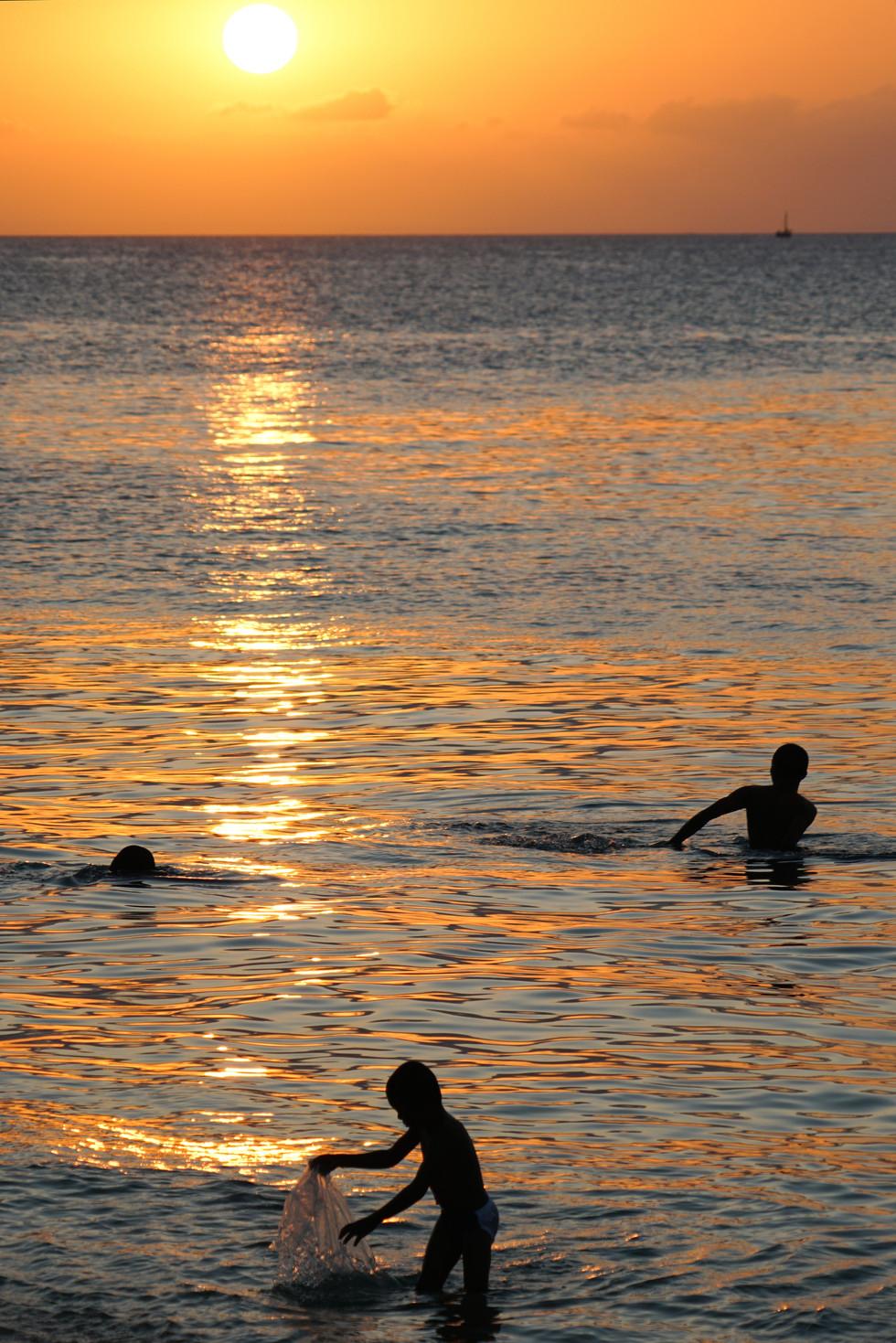 Sunset Swim _