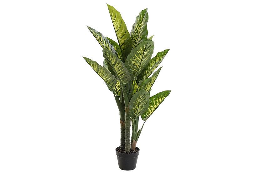 PLANTA PVC DREFFENBACHIA