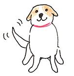 dog5.png