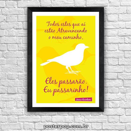 Poster Eu Passarinho