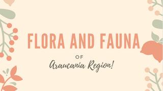 Araucania Region