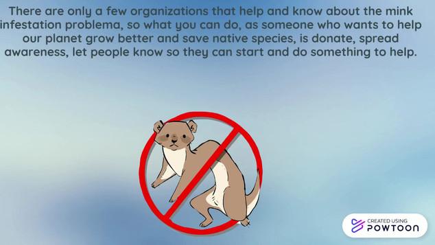 Help us stop the minks!