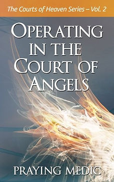 courts of angels.jpg