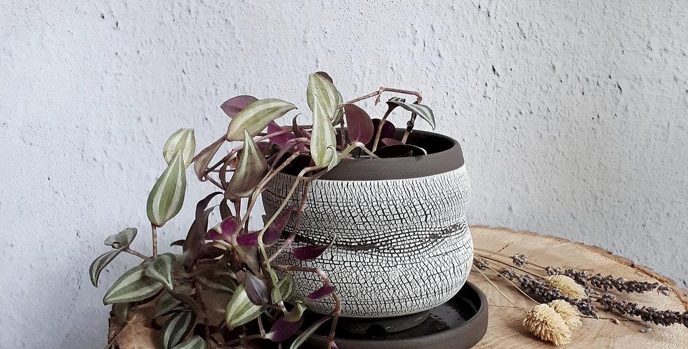 POT PLANTE AVEC COUPELLE   grès noir et engobe porcelaine