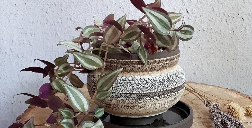 POT PLANTE AVEC COUPELLE | grès noir et engobes de porcelaine et grès roux