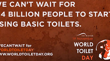 Happy Toilet Day (November 19)!