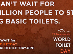 Happy Toilet Day (November 19)!