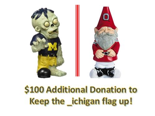 $100 Additional Donation - _ichigan!