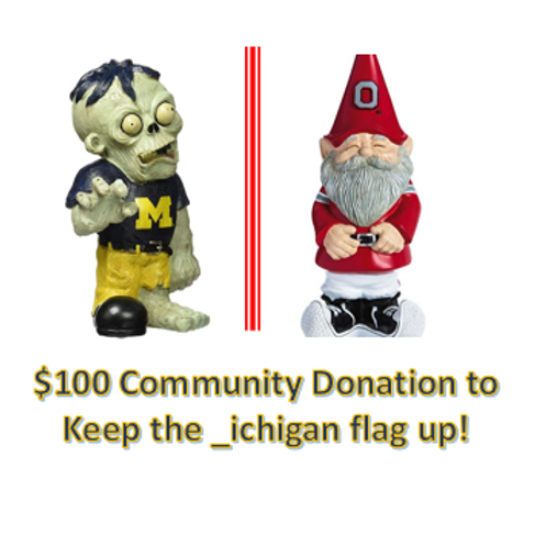 $100 Community Donation - _ichigan!
